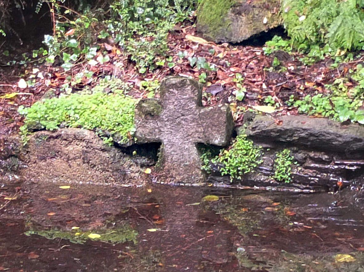 HENVIC : Lavoir du château de Trogriffon (détail)