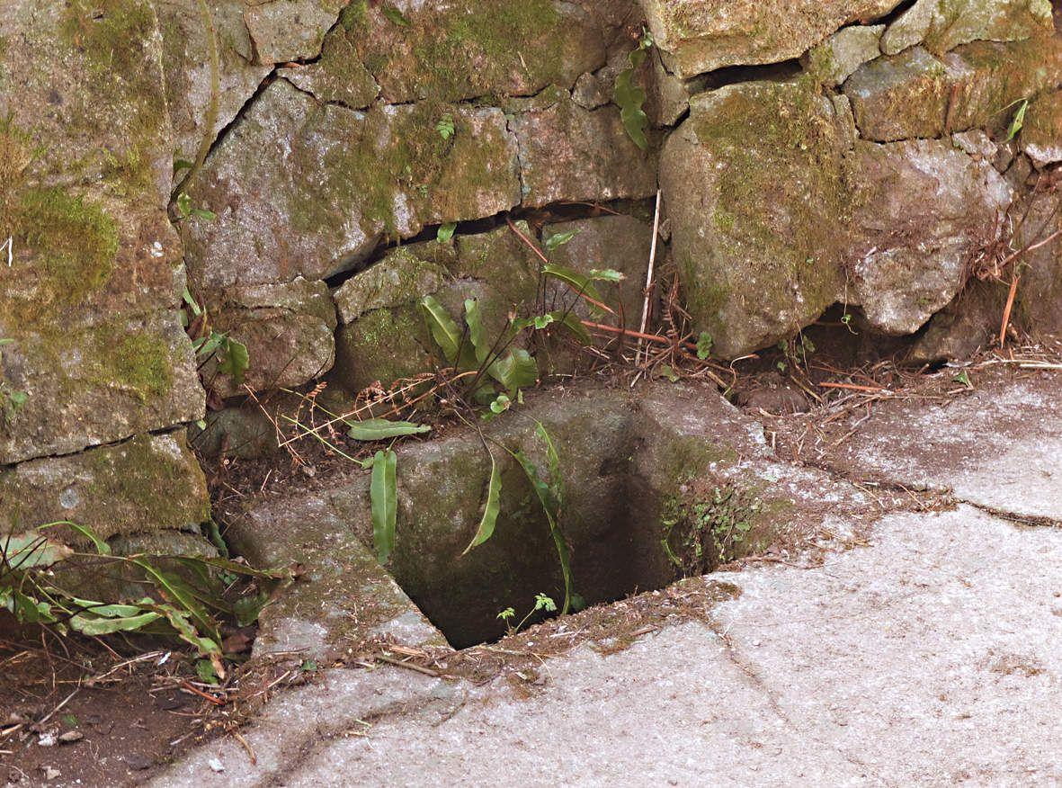 PLOUGASNOU : Fontaine de Saint-Samson détail