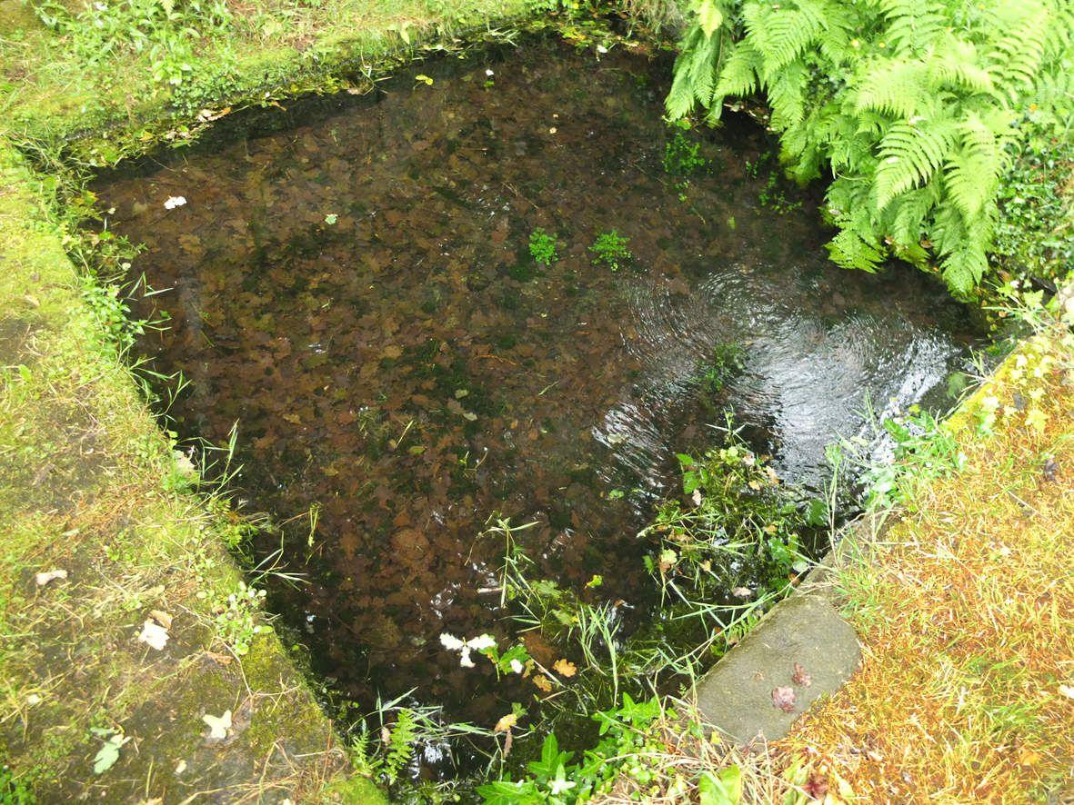 PLOUEGAT-MOYSAN :  Fontaine Saint-Laurent-du-Pouldour bassin
