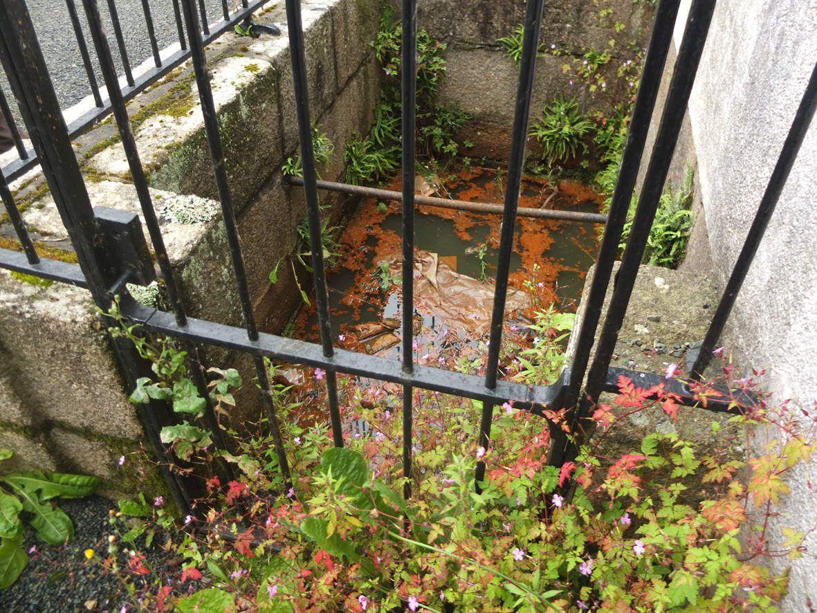 LANNION : Fontaine ferrugineuse : bassin