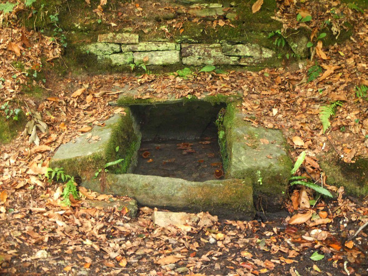TAULE : Fontaine de  la forêt de Lannigou