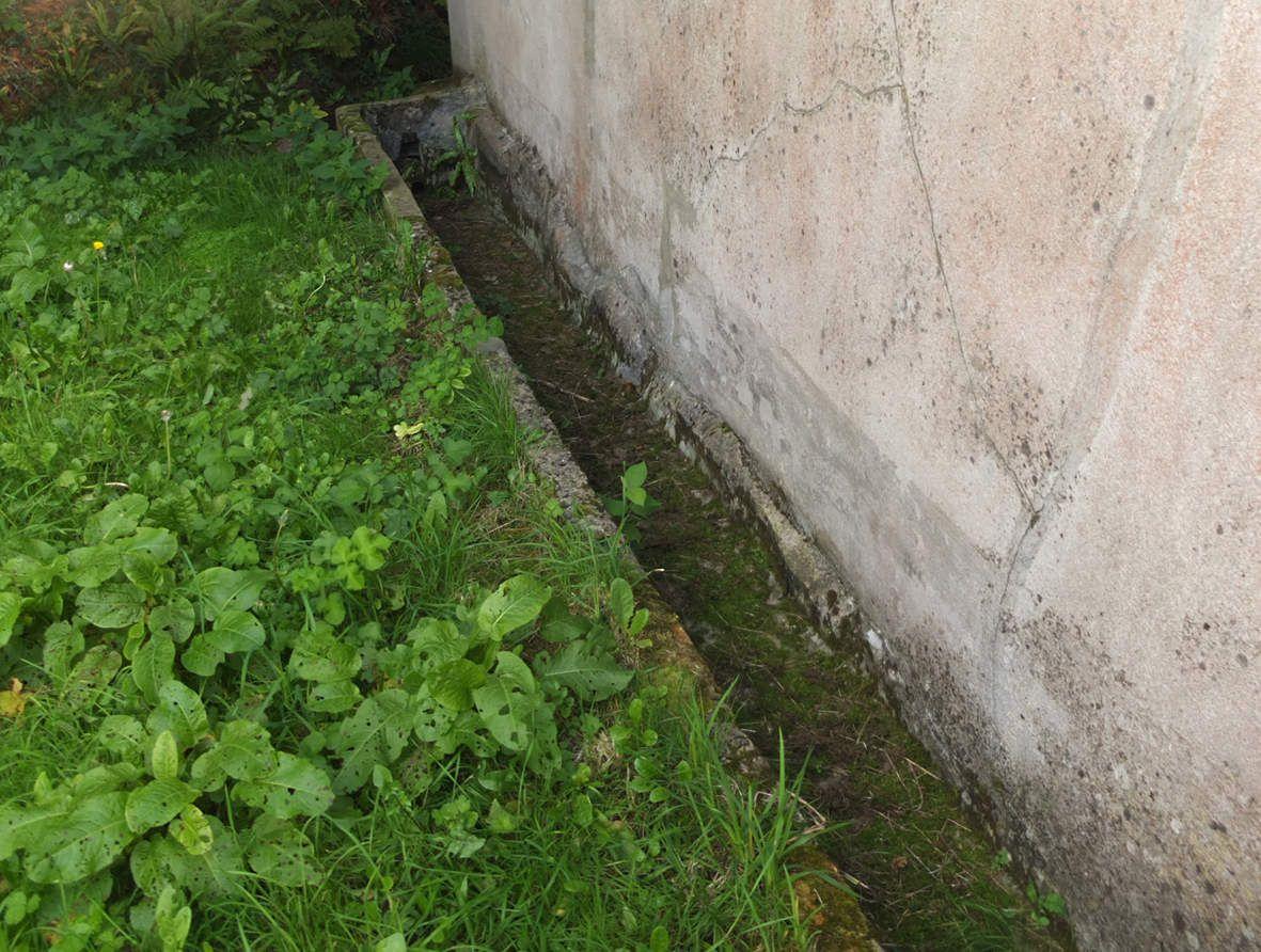 PLOUMILLIAU : Fontaine de Kerdrinken, abreuvoir