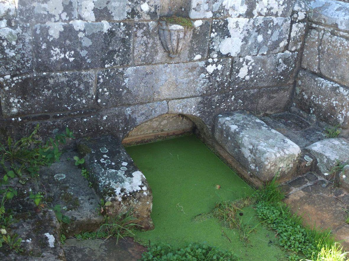 TREBEURDEN : Fontaine de Bonne Nouvelle détail