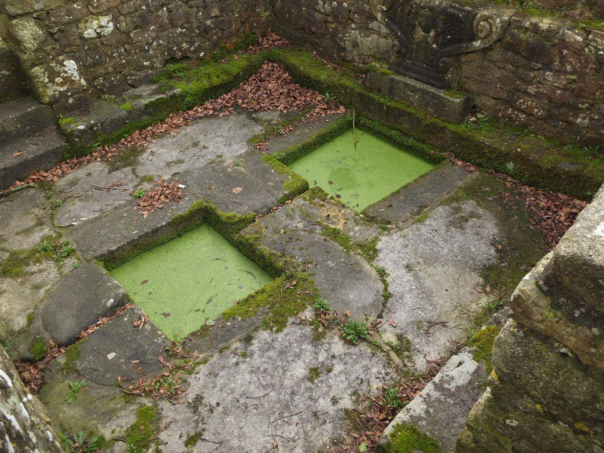 TREMAOUEZAN : Fontaine Saint-Jean-Baptiste détail 1