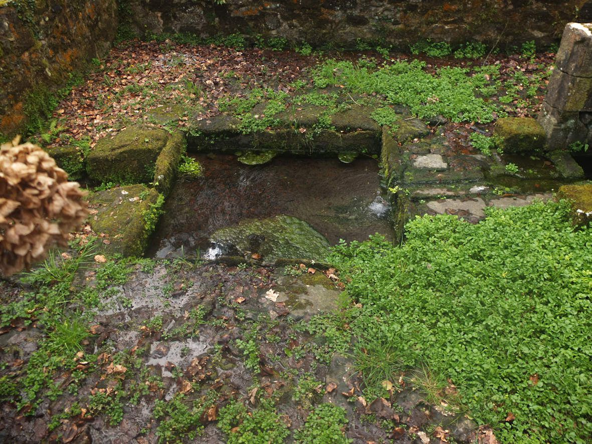 DIRINON : Fontaine Saint-Divy bassin