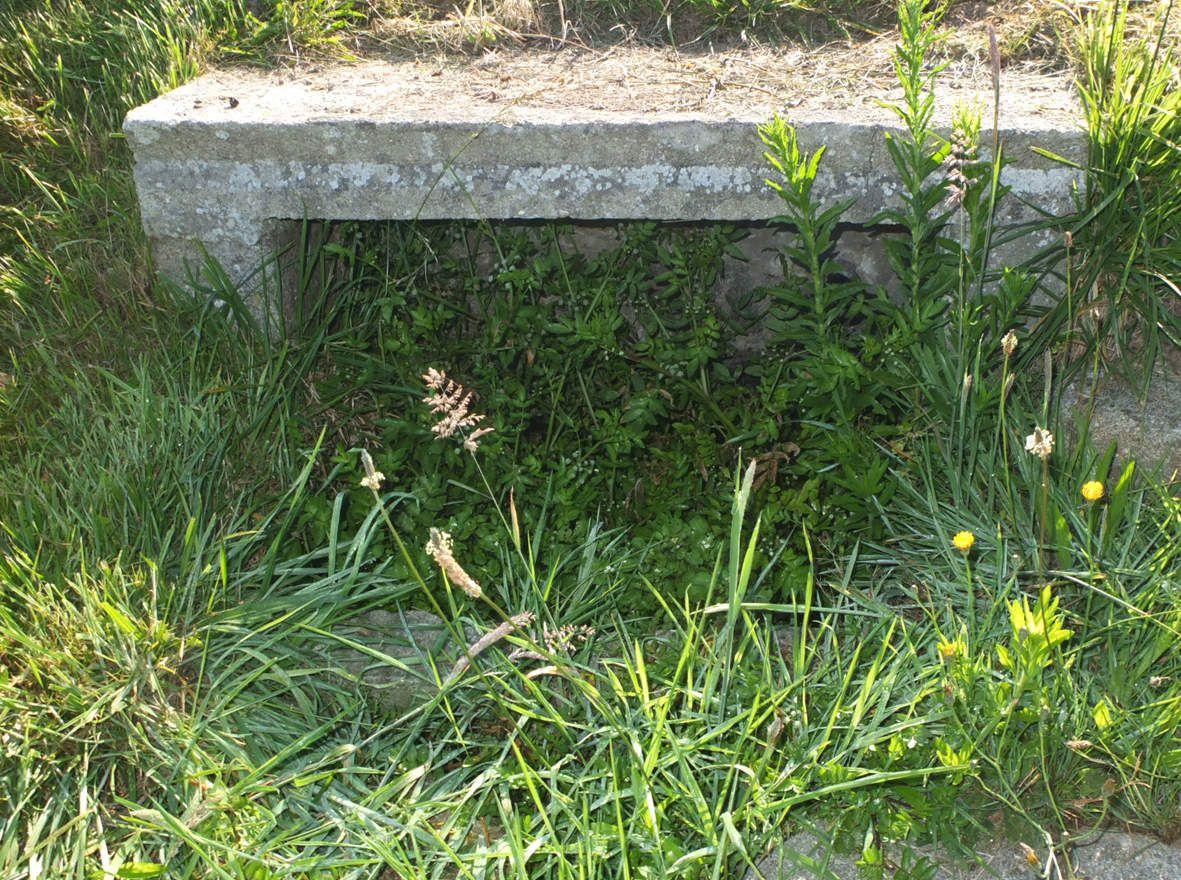 PLOUGUERNEAU : Fontaine de Kroaz al Lann