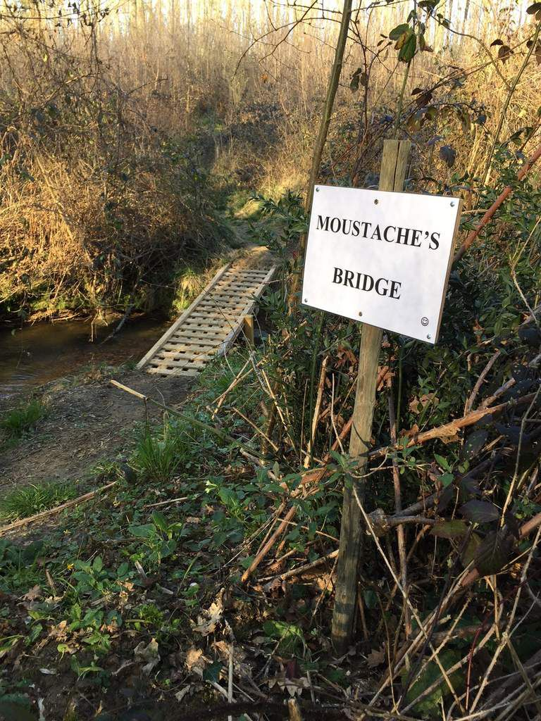 The Moustache's bridge