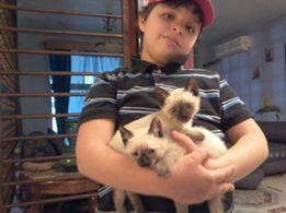 Meriem est triste, son petit chat est mort...
