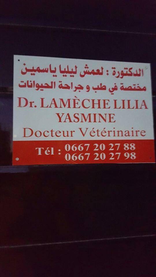 La fille de notre ami Lamine Lameche ouvre une clinique vétérinaire à Laghouat