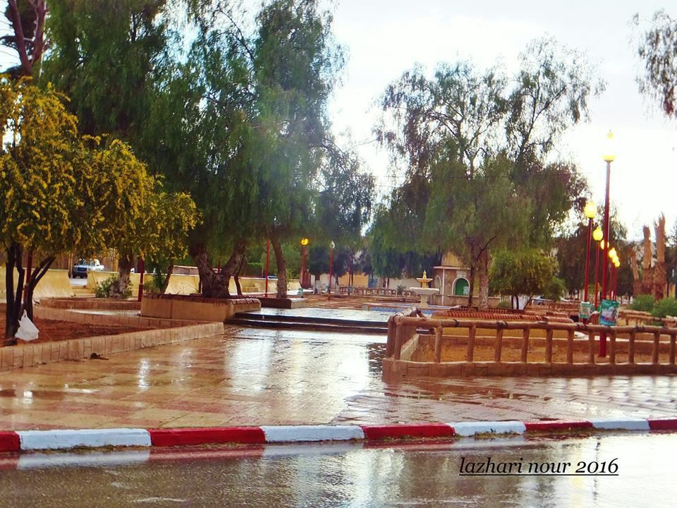 Nouredine Lazhari : Laghouat pour fascination...