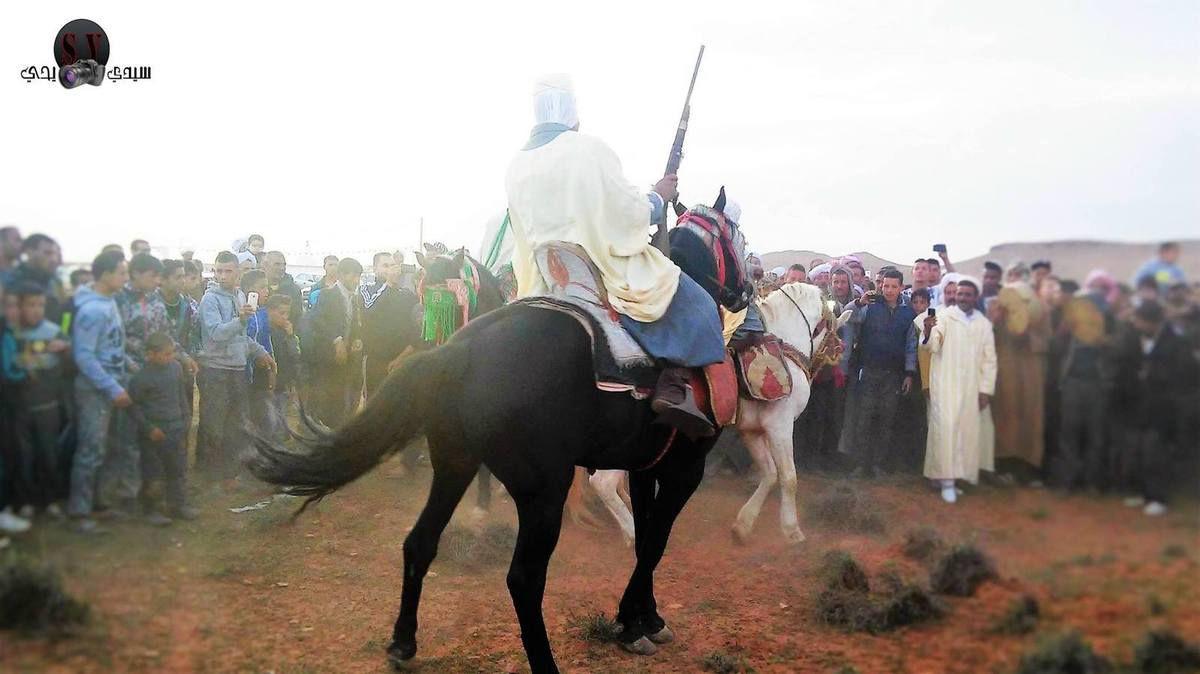 SEBGAG : ses champs de blé et ses cavaliers vus par la caméra de sidi yahia