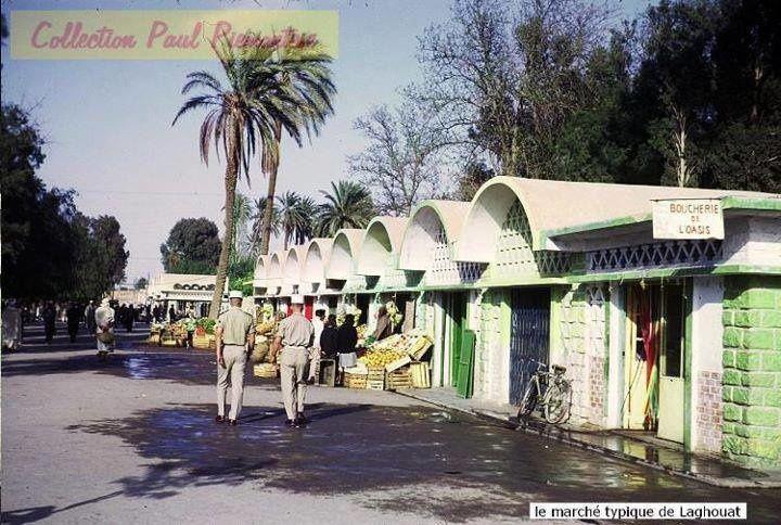 Récit de mon premier voyage à Alger (suite): Le grand retour à Laghouat