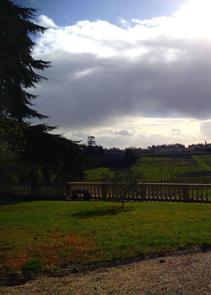 Reaux château sur la Dordogne à Condat  St Patrick mess Esog   Mon jardin Epinette Rues du centre  Fronsac 2016 2017