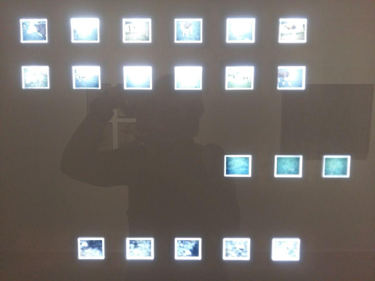 Jean Dubuffet, l''oeil du photographe. Rencontres Arles 2017
