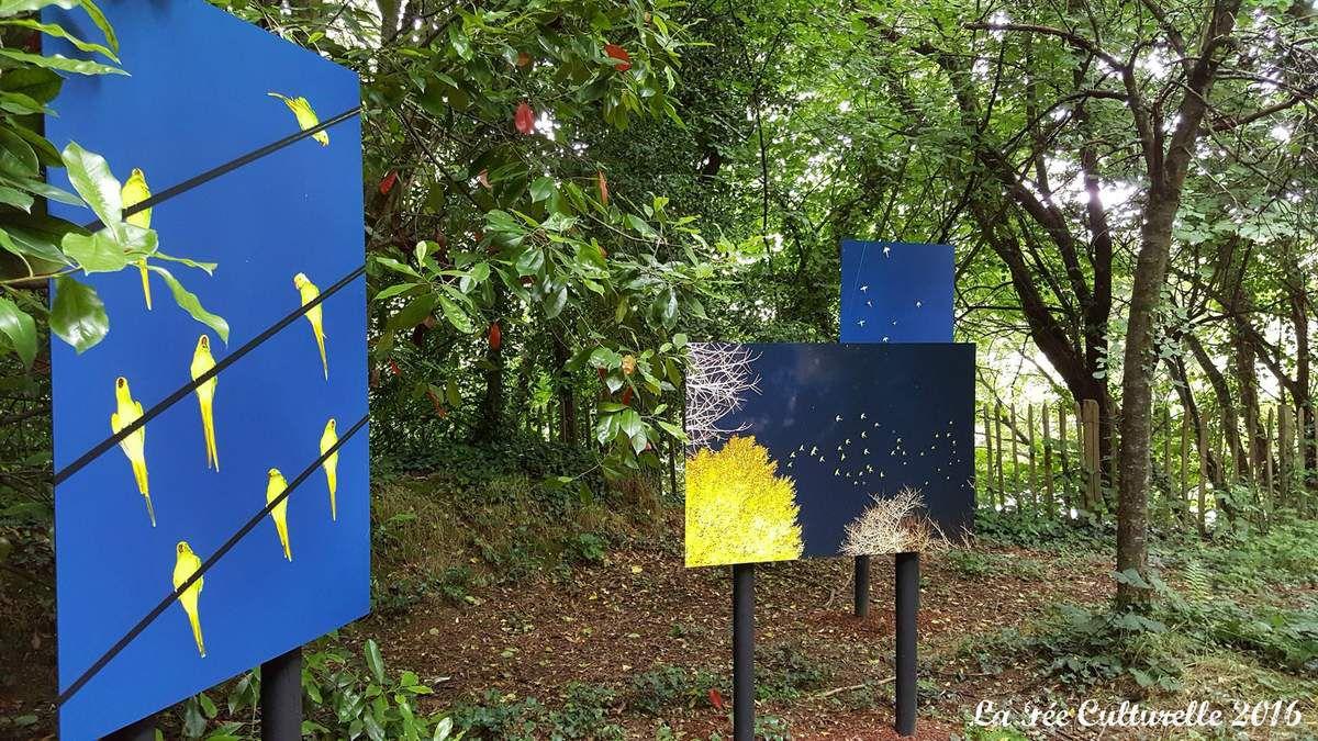 Découverte du labyrinthe végétal avec comme artistes : Kirro, Yoshinori Mizutani, Lucille Reyboz, Motoki...