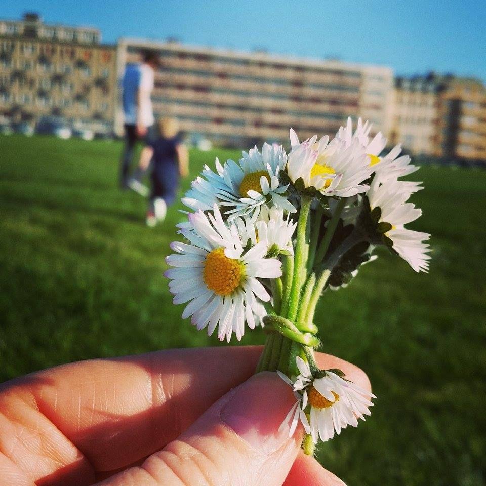 Les bouquets les plus simples