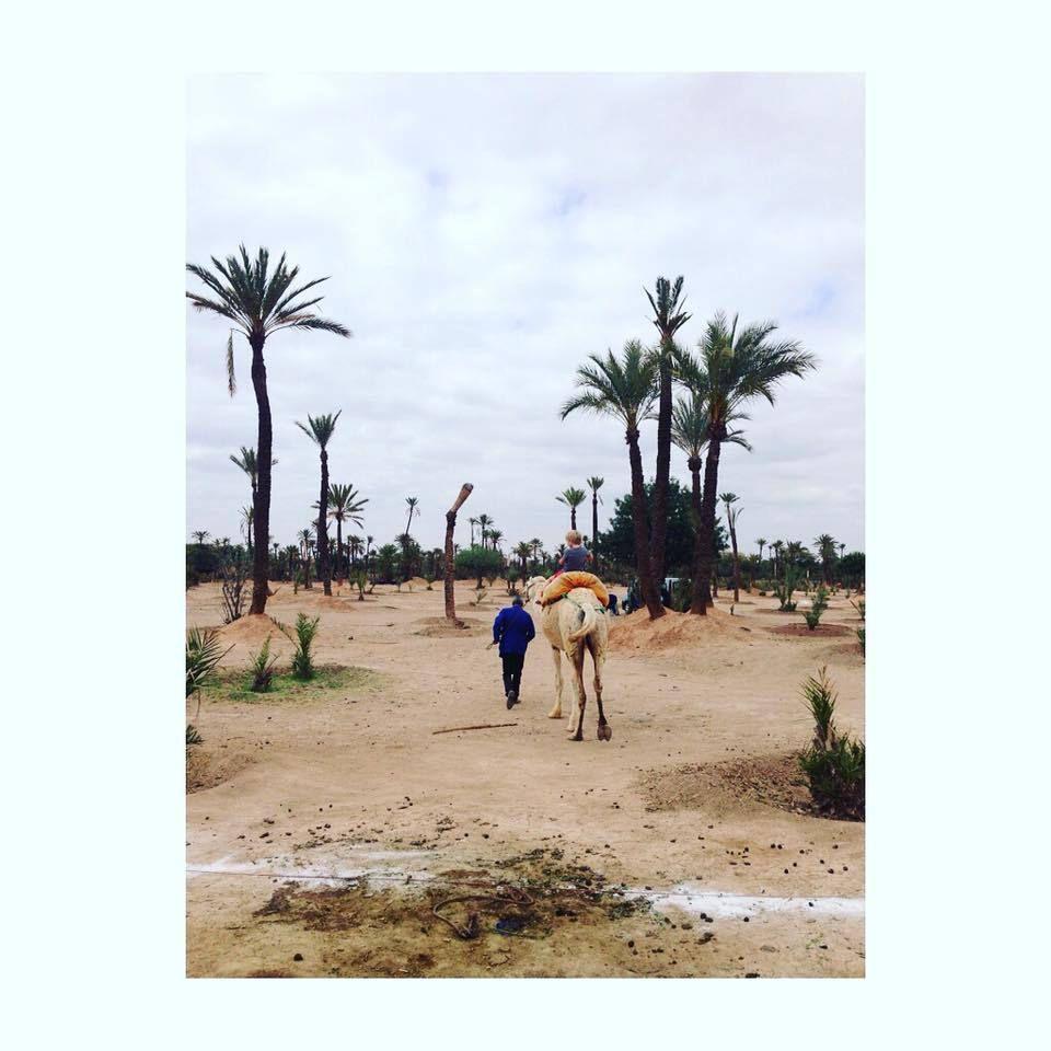 Une semaine à Marrakech