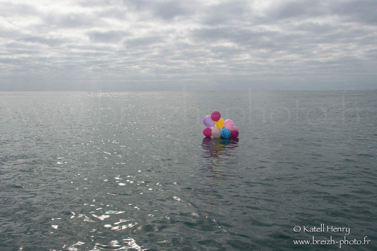 Triste dérive vers le continent de Plastique