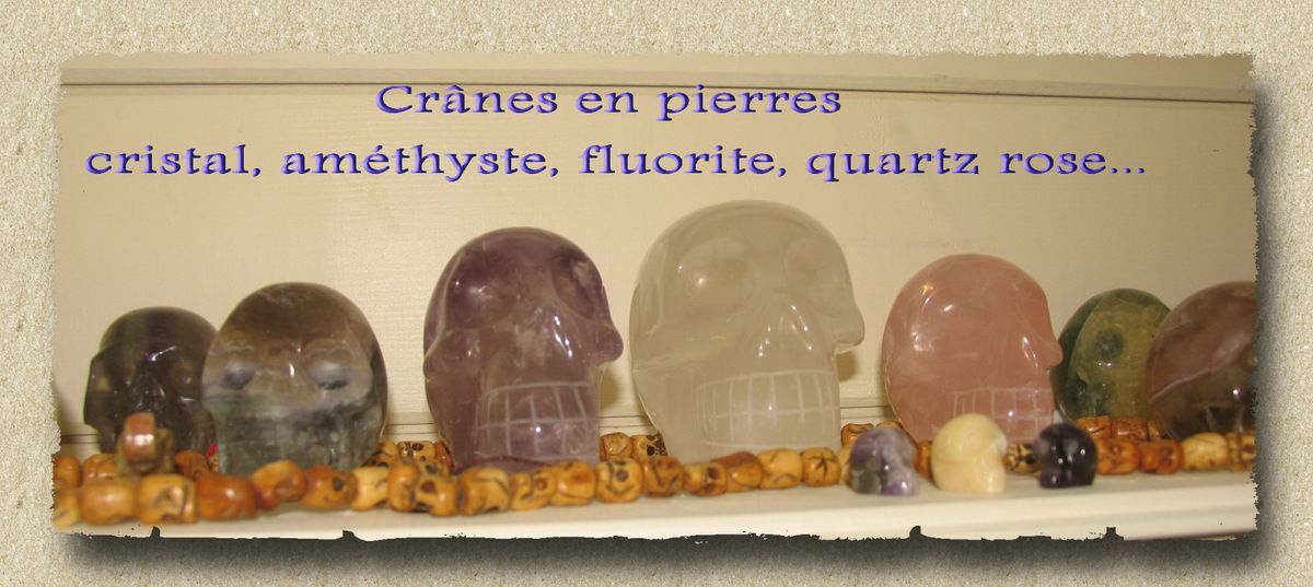 Collection de Crânes