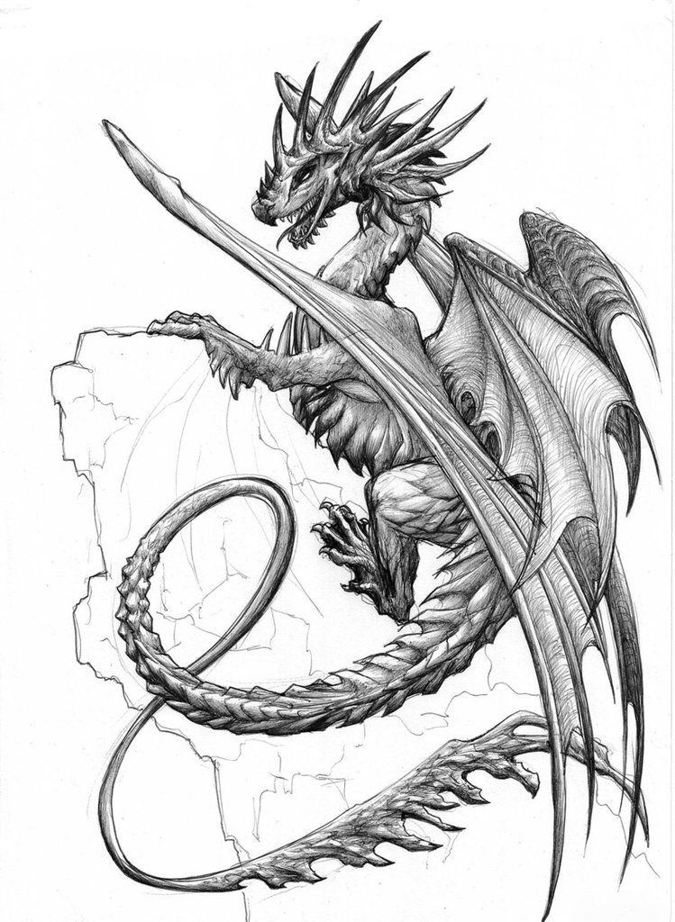 Dragon Scales Drawing further Flying Dragon 5198508 additionally Devil Head Drawing likewise Apprendre A Dessiner additionally Snake Drawing. on scary dragon heads