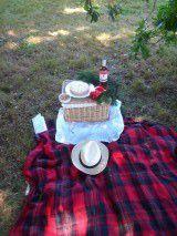 Dimanche 28 juin : Sympathique  pique-nique dans le Parc du Château de Versailles