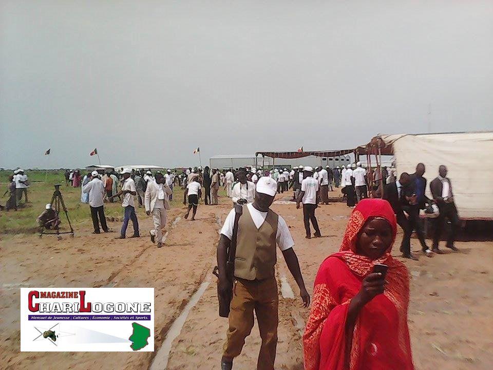 Photos: les participants à la cérémonie du lancement officiel de la semaine de l'arbre, hier au sein de l'université de Koufra.