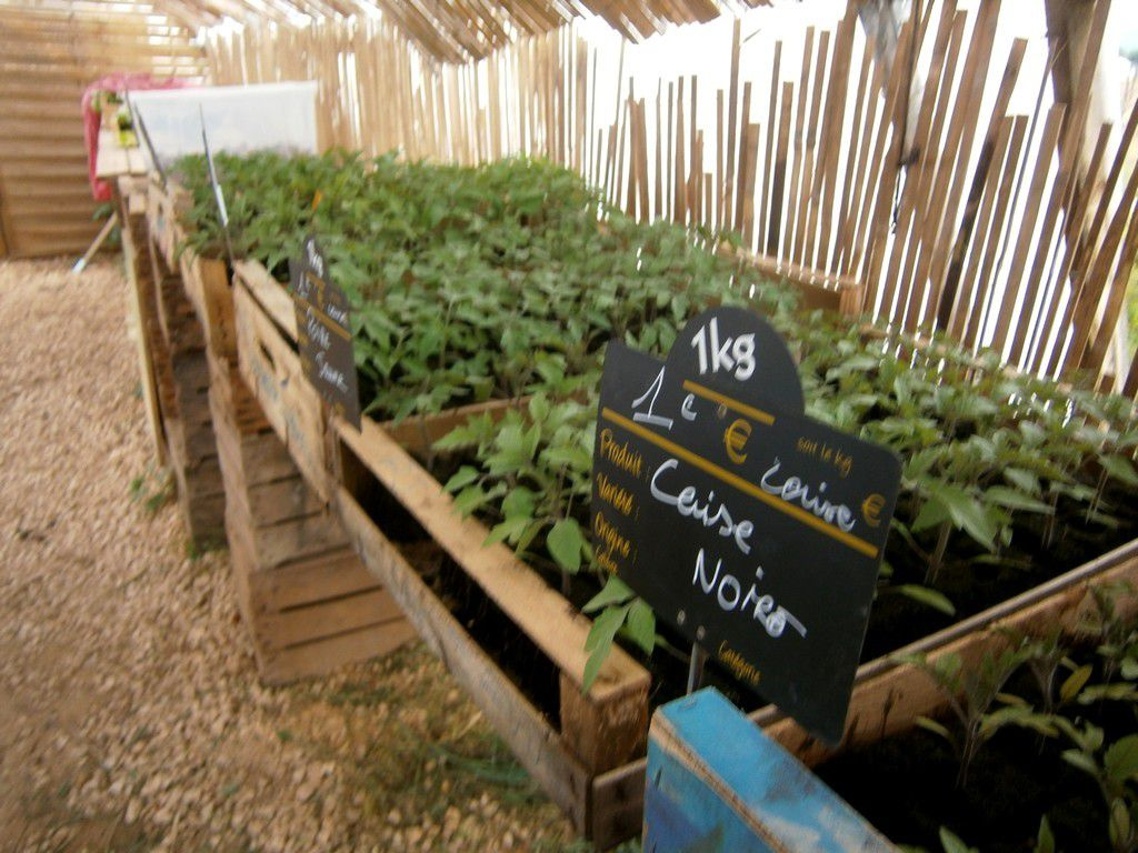 Local : Réouverture de printemps du Potager du Cabanon !