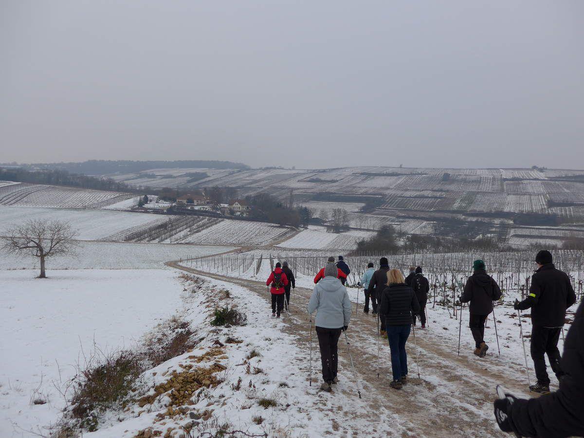 Marche à Rosheim.