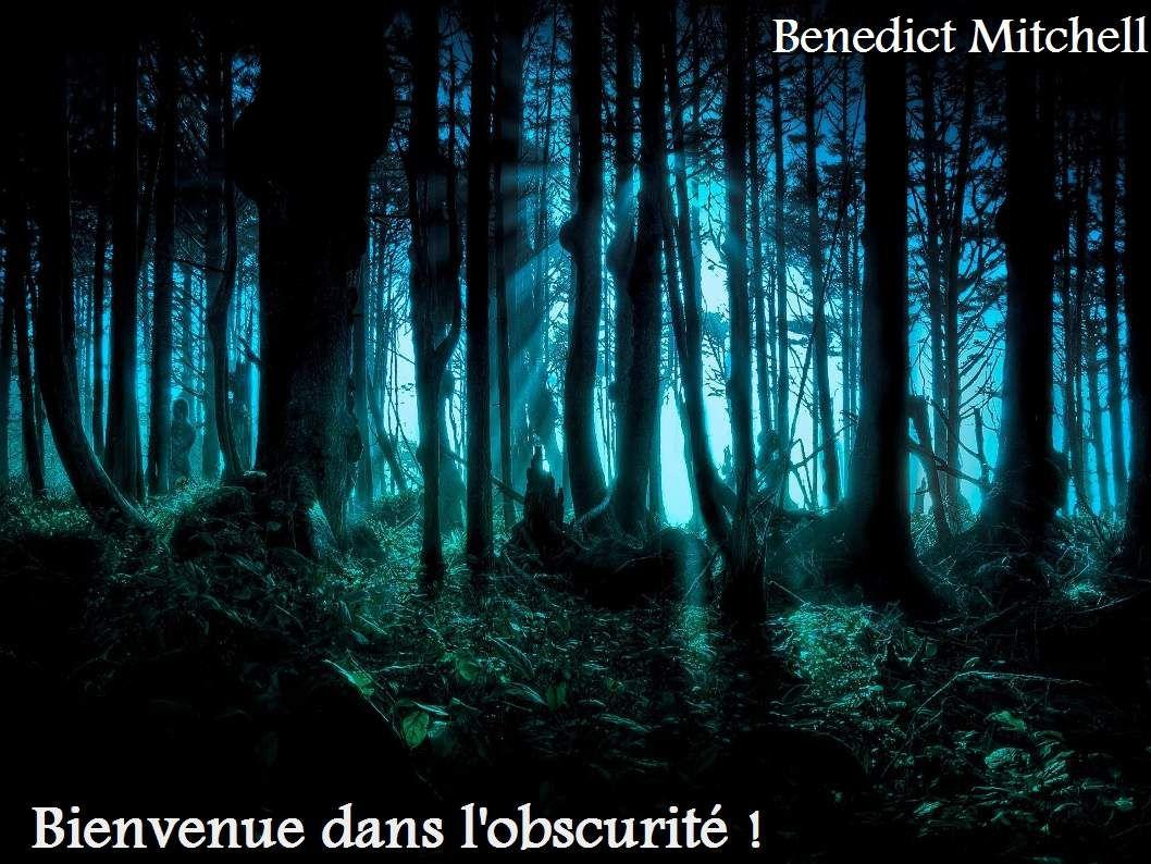 &quot&#x3B; Bienvenue dans l'obscurité ! &quot&#x3B;, une nouvelle inédite de Benedict Mitchell, 2015