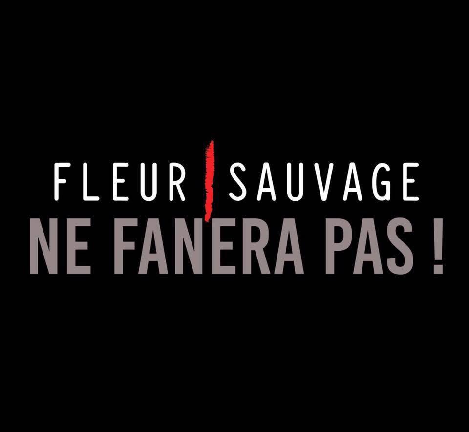 FLEUR SAUVAGE/ACONITUM NE FANERONT PAS !