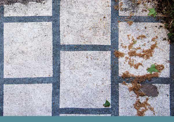 Ravenne 13 : Diverses églises de la ville. Du 5 au 22 mai 2013