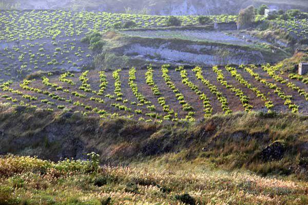 Vues de Santorin. Du 6 au 11 avril 2014