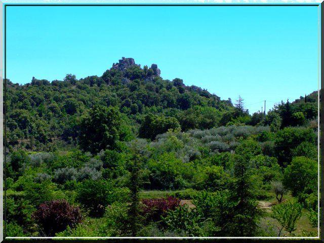 Voyez vous la beauté sur la colline ?