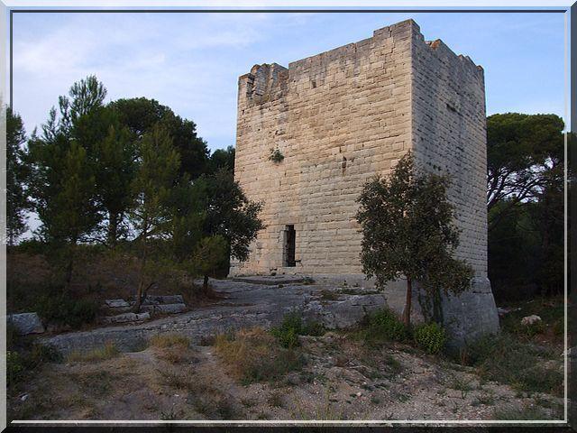 Est ce un donjon ou un habitat fortifié ?