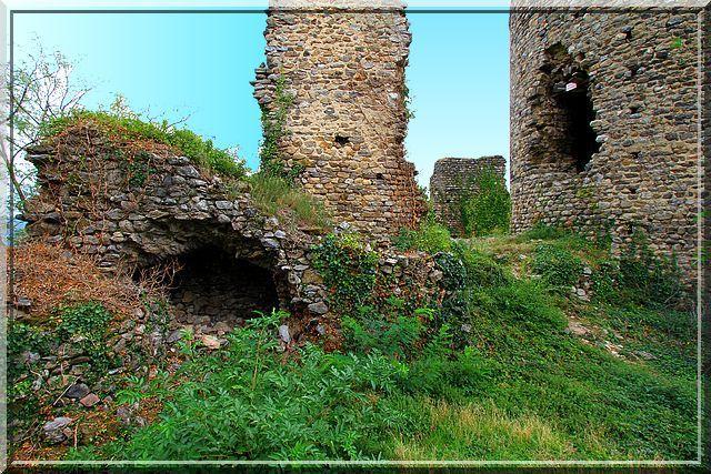 L'intérieur du château est riche.... en ruines