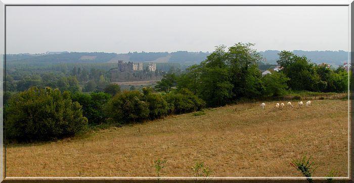 Quel magnifique château fort construit sur plusieurs siècles !