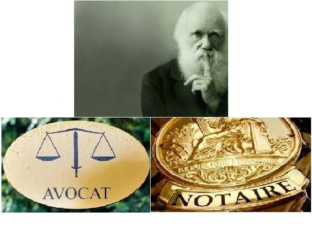 Darwin, incontournable !