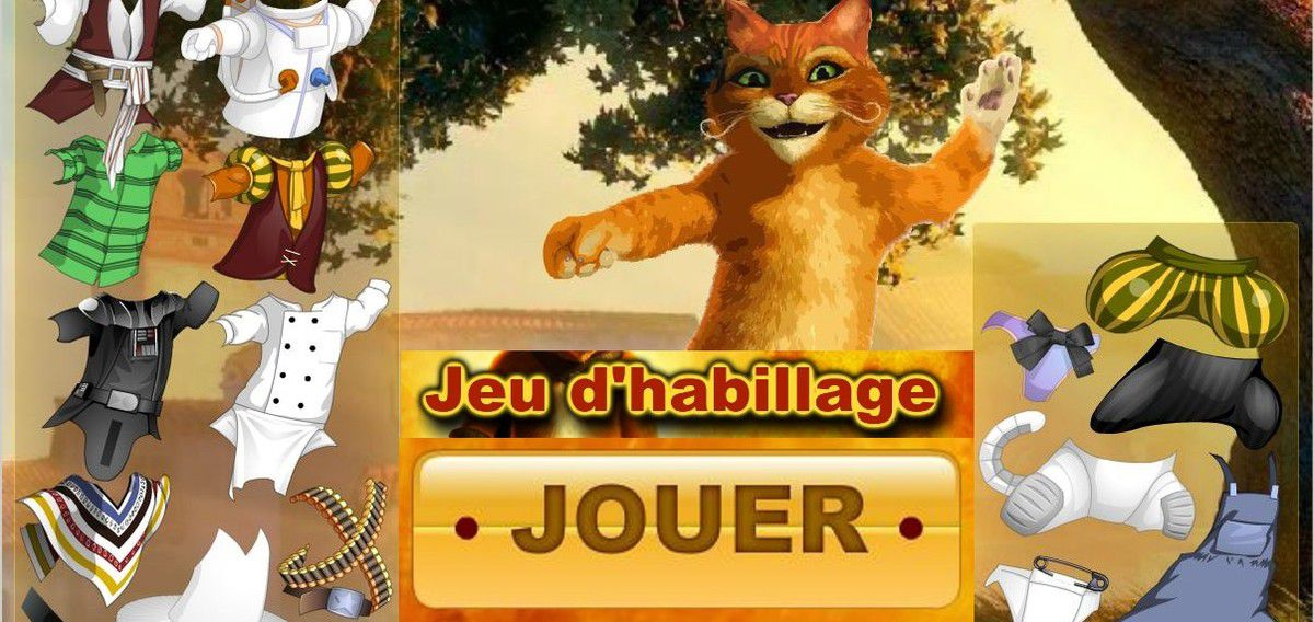 chat-potte-jeu-habillage.JPG