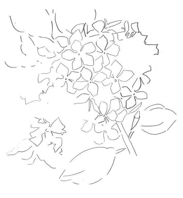 Dessin et peinture - vidéo 1377 : Peindre un hortensia à l'aquarelle (préparation du fond et dessin du motif) 1.