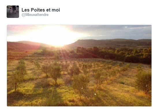 Le tour de l'Occitanie en 14 jours