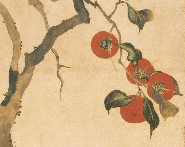 Plaqueminier (kakinoki), détail, Sakai Hoitsu, Japon, 1816, n° Inv.57.156.3, Metropolitan Museum