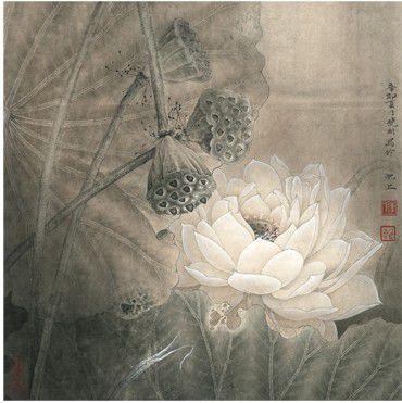 Lotus, symbole de longévité