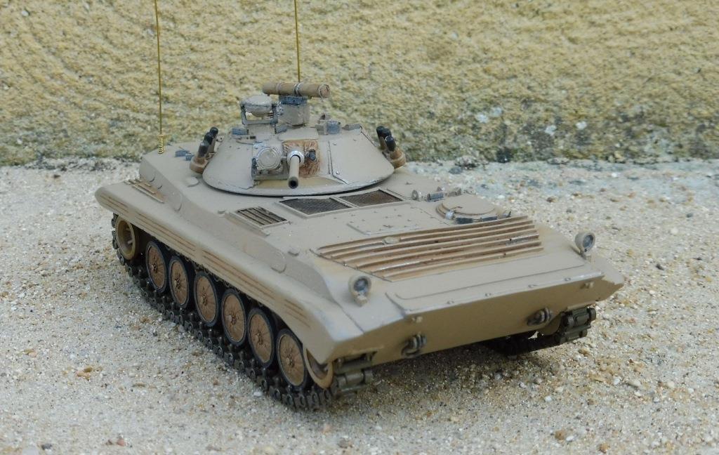 BMP-2 au 1/48 (HLBS) par Dominique B.