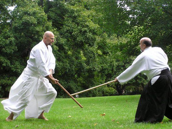 Kogen Budo, plongée d'un loup dans les arts martiaux anciens