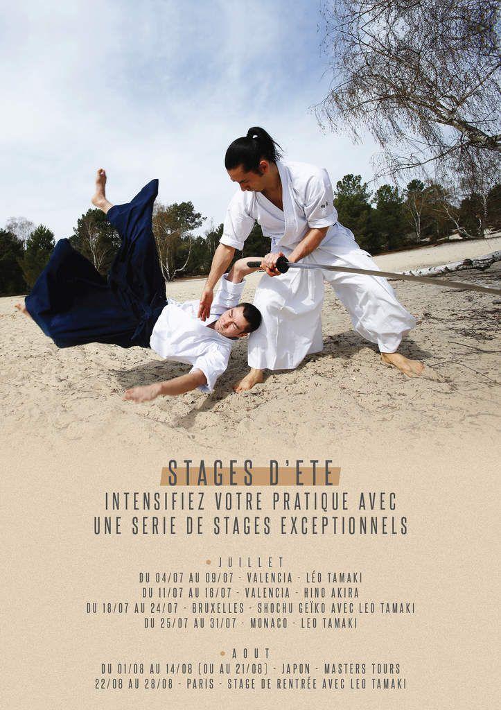Stages d'été 2016, Hino Akira et Léo Tamaki