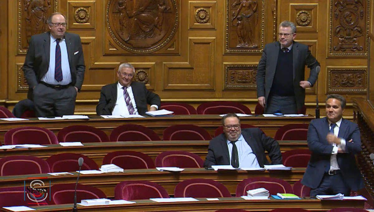 Seuls assis, Michel Magras et Michel Fontaine, tous les deux LR, n'ont pas voté l'amendement relatif aux allocations familiales des indépendants, contrairement à Didier Roberts