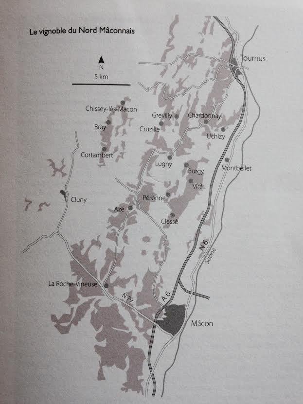Le naturisme ne date pas d'aujourd'hui : la méthode Pierre Guillot Clos des Vignes du Maynes Macon-Cruzille by LeRouge&amp&#x3B;leBlanc