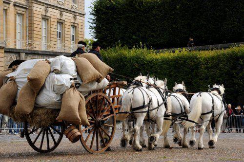 Les 5 Boulonnais menés par Michel Vincent (photo Jean-Léo Dugast)