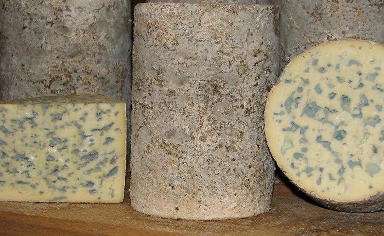 La fourme, appelée « fromage de Roche » à Valcivières la belle histoire d'Antoine et Louis de Boismenu qui produisent la seule fourme d'Ambert d'estive…