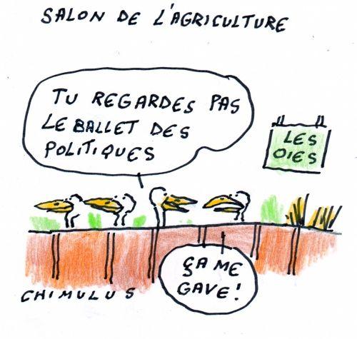 CHAP.15 opération Chartrons, «Dans son imagination, le président a vu que le gardien partait sur sa droite, il a placé une belle frappe côté gauche.» Hollande reconnaît donc encore sa droite de sa gauche.